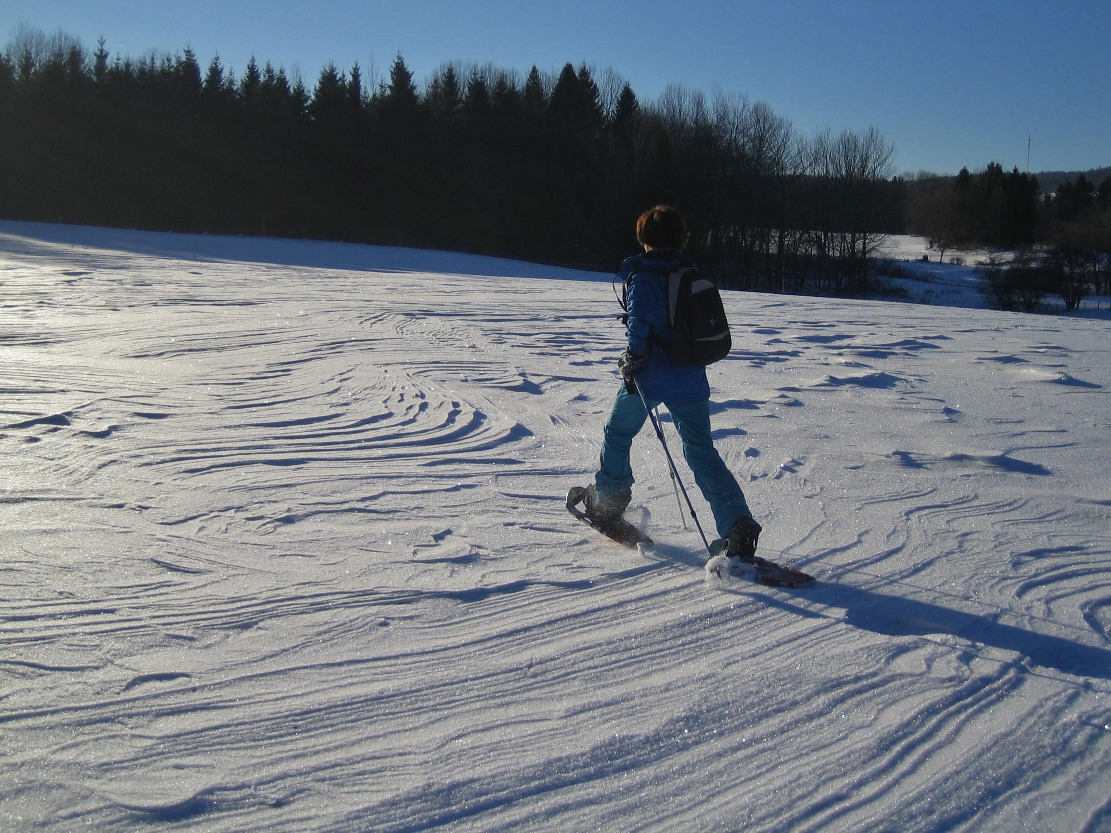 Balade en raquettes- Gîte Haut Jura